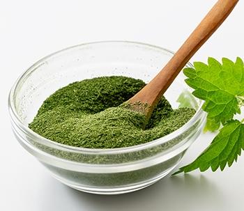 Nettle Leaf Powder - Power Powders - Speciality Foods